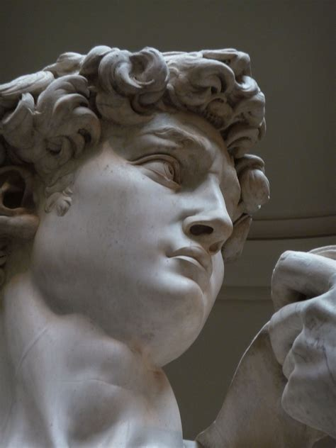 michelangelo david statue nǃai the story of a ǃkung woman wikipedia