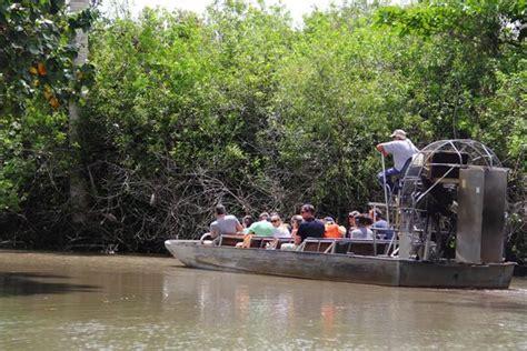 everglades airboat tours alligator farm seminole airboat tour picture of everglades alligator