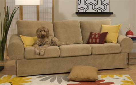 fabric couches  dogs homesfeed