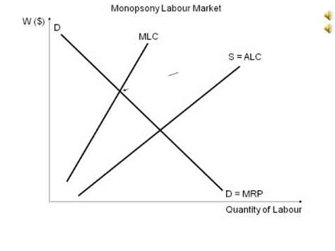 bilateral monopoly diagram monopsonistic definition crossword dictionary