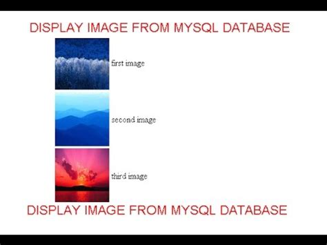 Search Php Display Image From Mysql Database In Php In