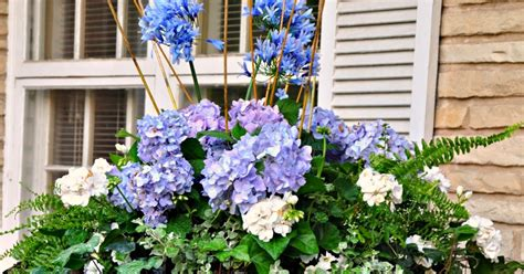 white outdoor planters serendipity refined blue and white outdoor summer