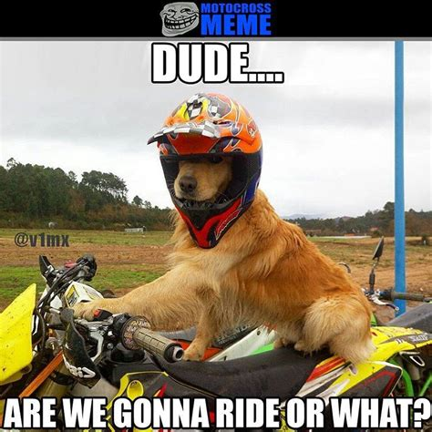 its time to ride when your dog wants you to photo by