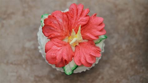 Hibiscus Flower Cake Decoration by Hibiscus Cake How To Decorate Cupcakes Quot Hibiscus Flower