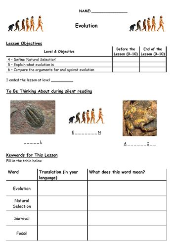 Evolution Worksheets by Evolution By Biscuitcrumbs Teaching Resources Tes