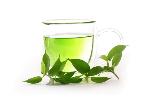 Teh Green Tea 7 reasons to drink green tea elmens