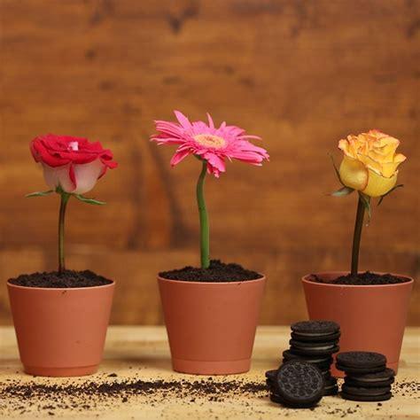 vasi fiori esterno vasi esterno resina vasi da giardino