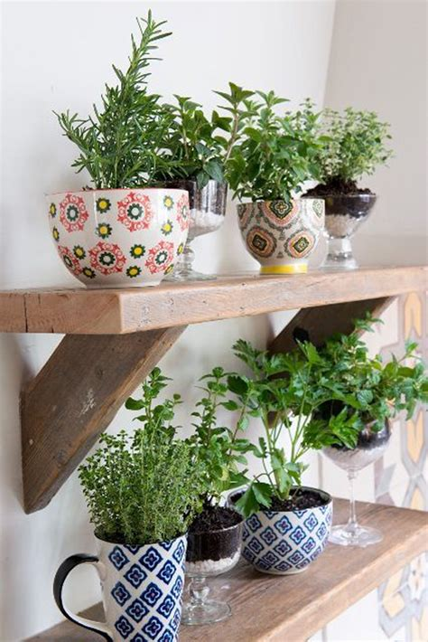 creative diy indoor herb garden ideas house design
