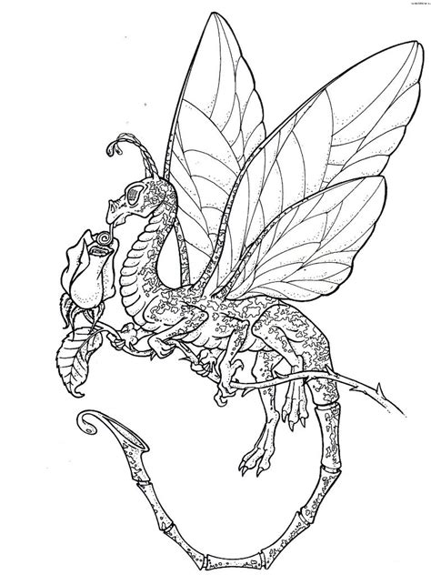 coloring pages free coloring pages of dragons for adults