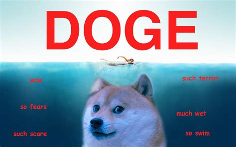 Doge Meme Gifts - doge wallpaper desktop background tempat untuk