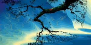 Home Design Online Store by Eyvind Earle Gallery 21 Carmel Ca The Largest