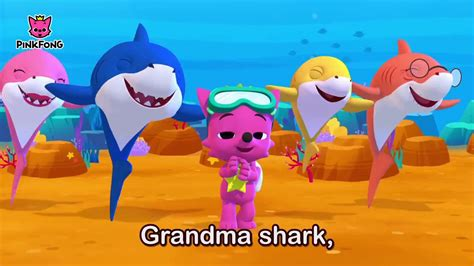 baby shark youtube dance baby shark sing and dance animal songs pinkfong songs for