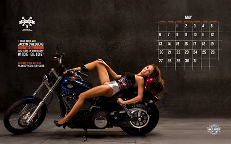 Custom The Best Picture 2 harley davidson motorcycle wallpaper wallpapersafari