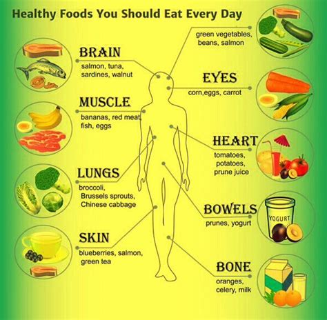 healthy fats to eat everyday health foods to eat everyday best burning diet