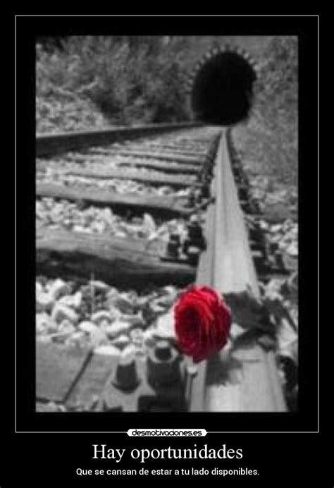 imagenes oportunidades amor hay oportunidades desmotivaciones