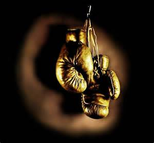 Golden Gloves Zappa View Topic Picture Association 2016