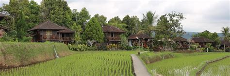 puri lumbung cottages puri lumbung cottages munduk hotel review a world of travels with