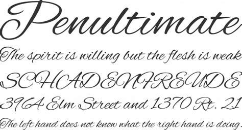 alex brush font free by typesetit font squirrel