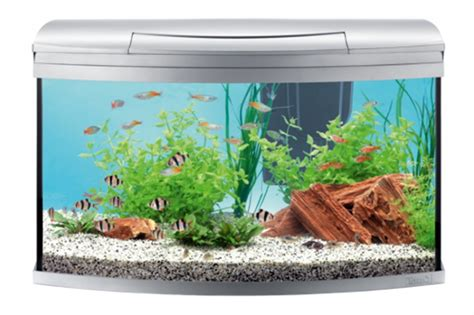 Aquarium 100 L by Tetra Aquarium Aqua Artii Led Set Anthracite 130l