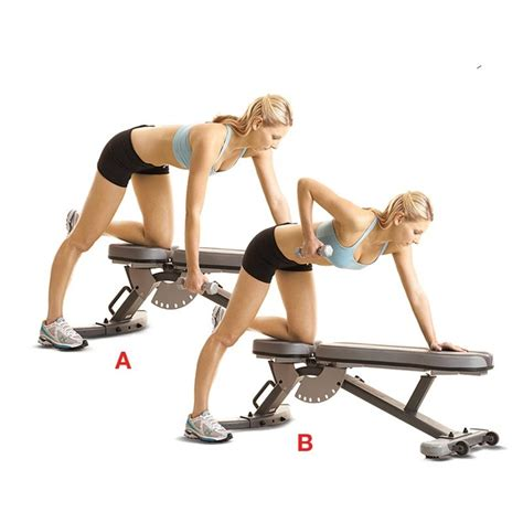back exercises with bench best 25 1 arm dumbbell row ideas on pinterest one arm
