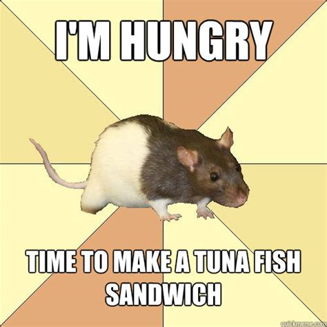Tuna Sub Meme - i m hungry time to make a tuna fish sandwich redundant
