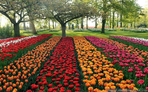 Garden Of Quality Ko 83 Beautiful Garden Wallpapers Pictures Of Beautiful