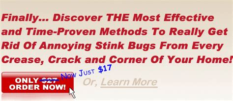 how to get rid of stink bugs in my house how to get rid of stink bugs getting rid of stink bugs permanently