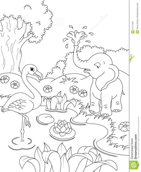 Childrens Coloring Pages Animals by Nature Animal Coloring Pages Coloring Page For
