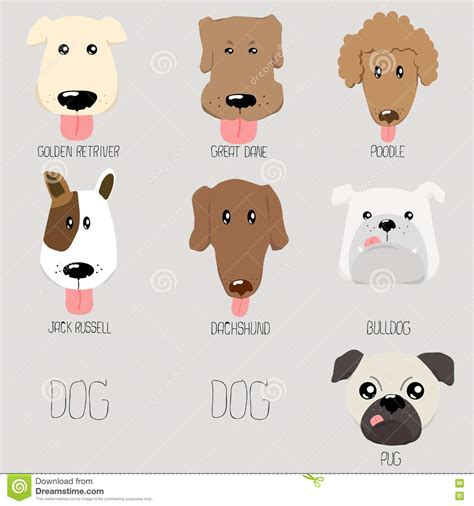 doge type of type illustration stock vector illustration 72582159