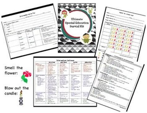 special ed survival guide how to prevail in the special education process and discover strategies for you and your child books 30 best images about sped organization forms on
