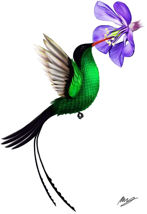 jamaican hummingbird tattoo expression pinterest jamaican national bird flower tattoo commission drawing