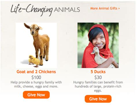 world vision gift catalog the b keeps us honest nc mom