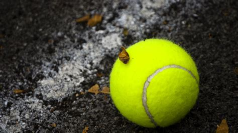 tennis hd wallpapers  dunlace tennis club