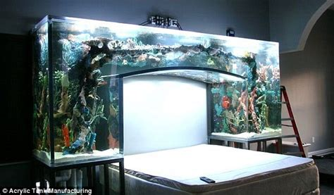 aquarium beds nfl star s chad ochocinco s amazing fish tank in his