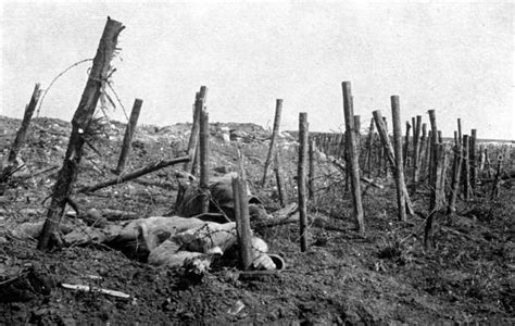 Behind Enemy Lines Over 100 Photographs Of German