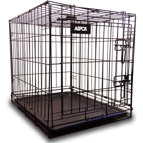 cheap puppy near me cheap kennels for sale near me pets wallpapers