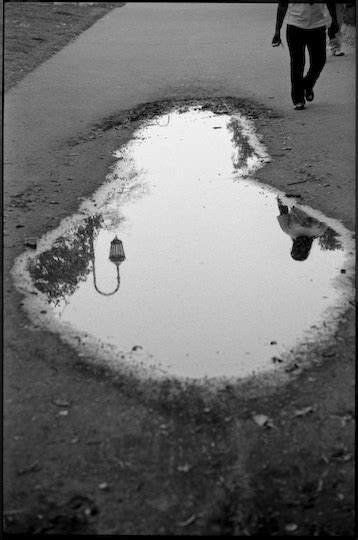 Highlights and Shadows: Puddle | Oakland North