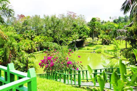 imagenes de jardines botanicos en mexico jard 237 n bot 225 nico fotos y videos universidad de puerto rico