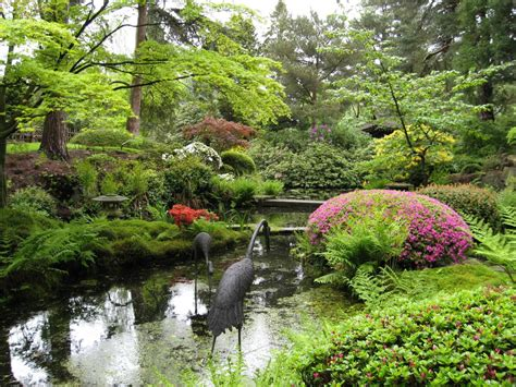 japanese garden pictures japan society north west gallery 1 photographs