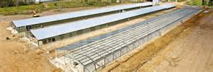 santrev building superior chicken sheds poultry housing
