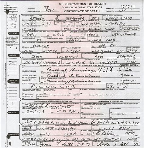 Shelby County Birth Certificate Records The Spiraling Chains The Spiraling Chains Kowalski Bellan Family Trees