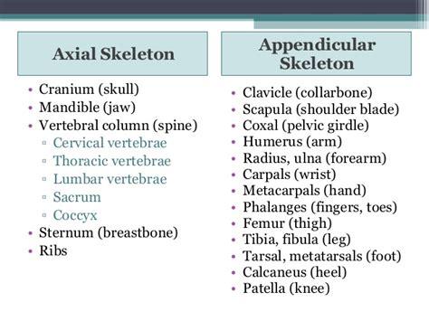 carbohydrates definition quizlet mandible cranium jaw collarbone clavicle coxal humerus