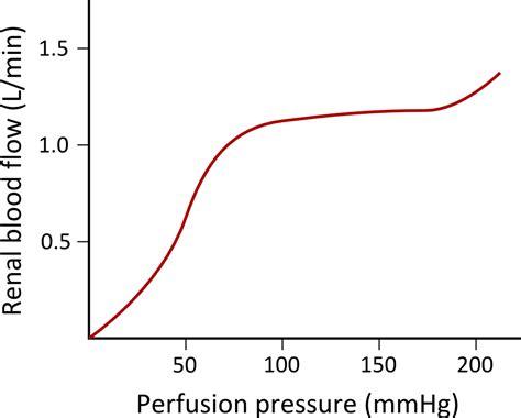 wide swings in blood pressure natalies casebook tag
