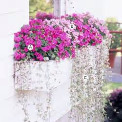 Narrow Window Boxes - easy recipes for window boxes in shade