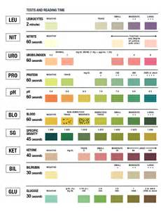 urinalysis test color chart learn parallax