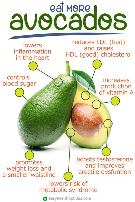 healthy fats in avocado the health benefits of avocados easy health options 174