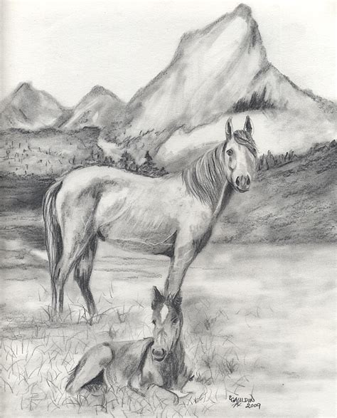 Drawings Of Animals by Animal Drawings 2009 Texaslady59 S