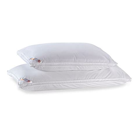 allergy luxe comforter allergy luxe 174 arm hammer side sleeper pillow 300 thread