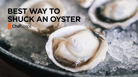 exposure is and shell promptly tell you its skin cancer the best way to shuck an oyster chefsteps pbs food