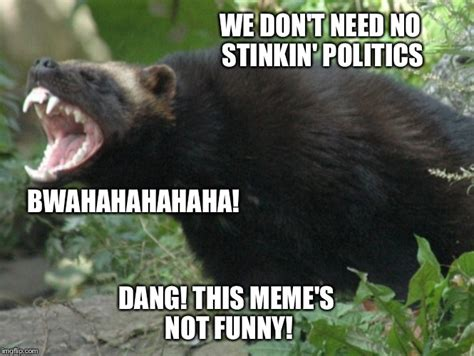 Badger Memes - laughing badger imgflip